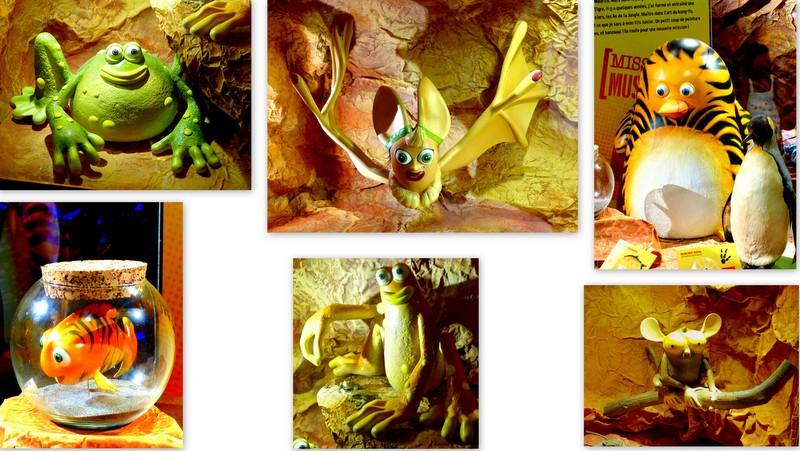 As de la Jungle expo pour muséum d'histoire naturelle Toulouse